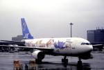 チャーリーマイクさんが、羽田空港で撮影した日本エアシステム A300B2K-3Cの航空フォト(写真)