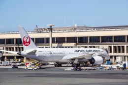 Dra-gonさんが、ダニエル・K・イノウエ国際空港で撮影した日本航空 787-8 Dreamlinerの航空フォト(飛行機 写真・画像)