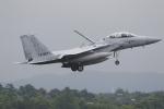 nob24kenさんが、千歳基地で撮影した航空自衛隊 F-15DJ Eagleの航空フォト(写真)