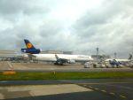 フランクフルト国際空港 - Frankfurt Airport [FRA/EDDF]で撮影されたルフトハンザ・カーゴ - Lufthansa Cargo [LH/GEC]の航空機写真
