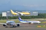 Take51さんが、新千歳空港で撮影したスクート 787-8 Dreamlinerの航空フォト(写真)