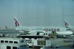 とらとらさんが、ドーハ・ハマド国際空港で撮影したカタール航空 787-8 Dreamlinerの航空フォト(飛行機 写真・画像)