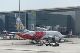 とらとらさんが、ドーハ・ハマド国際空港で撮影したエア・インディア・エクスプレス 737-8HJの航空フォト(飛行機 写真・画像)