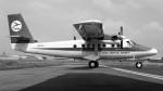 ハミングバードさんが、名古屋飛行場で撮影した日本近距離航空 DHC-6-300 Twin Otterの航空フォト(写真)