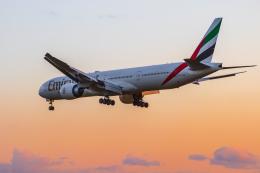 mameshibaさんが、成田国際空港で撮影したエミレーツ航空 777-31H/ERの航空フォト(写真)