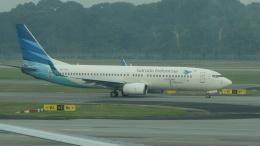 航空フォト:PK-GFA ガルーダ・インドネシア航空 737-800