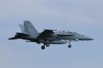 nobu_32さんが、厚木飛行場で撮影したアメリカ海軍 F/A-18F Super Hornetの航空フォト(写真)