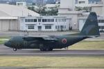 ワイエスさんが、名古屋飛行場で撮影した航空自衛隊 C-130H Herculesの航空フォト(写真)