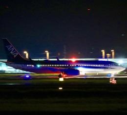 Zakiyamaさんが、熊本空港で撮影した全日空 737-881の航空フォト(飛行機 写真・画像)