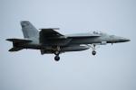 チャッピー・シミズさんが、厚木飛行場で撮影したアメリカ海軍 F/A-18E Super Hornetの航空フォト(写真)