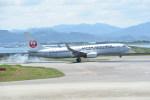 kumagorouさんが、徳島空港で撮影した日本航空 737-846の航空フォト(写真)