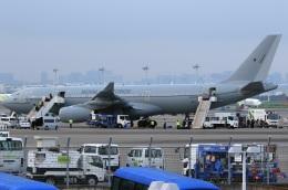 スポット110さんが、羽田空港で撮影したイギリス空軍 A330-243/MRTTの航空フォト(写真)