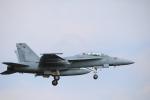 msrwさんが、厚木飛行場で撮影したアメリカ海軍 F/A-18F Super Hornetの航空フォト(写真)