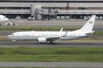 Gulf650Erさんが、羽田空港で撮影したサウジアラビア王室空軍 737-8DP BBJ2の航空フォト(写真)