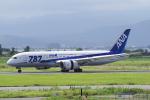 yabyanさんが、米子空港で撮影した全日空 787-8 Dreamlinerの航空フォト(飛行機 写真・画像)