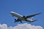うめたろうさんが、那覇空港で撮影した中国東方航空 A330-343Xの航空フォト(写真)