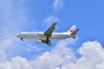 うめたろうさんが、那覇空港で撮影した日本トランスオーシャン航空 737-446の航空フォト(写真)