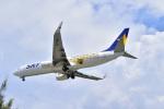 うめたろうさんが、那覇空港で撮影したスカイマーク 737-86Nの航空フォト(写真)