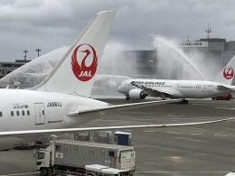 kobabiさんが、成田国際空港で撮影した日本航空 787-8 Dreamlinerの航空フォト(写真)