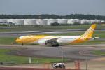 パピヨンさんが、成田国際空港で撮影したスクート 787-9の航空フォト(写真)