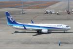 セブンさんが、中部国際空港で撮影した全日空 737-881の航空フォト(写真)