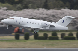Gulf650Erさんが、成田国際空港で撮影したHangar 8 Management Ltd CL-600-2B16 Challenger 601-3Aの航空フォト(飛行機 写真・画像)