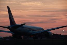 クリューさんが、鹿児島空港で撮影した全日空 787-8 Dreamlinerの航空フォト(写真)