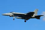 りんたろうさんが、厚木飛行場で撮影したアメリカ海軍 F/A-18E Super Hornetの航空フォト(写真)