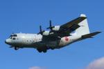 りんたろうさんが、厚木飛行場で撮影した海上自衛隊 C-130Rの航空フォト(写真)
