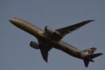 ぬま_FJHさんが、成田国際空港で撮影したエティハド航空 787-9の航空フォト(写真)