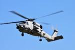 ヘリオスさんが、東京臨海広域防災公園ヘリポートで撮影したアメリカ海軍 MH-60G Pave Hawk (S-70A)の航空フォト(写真)