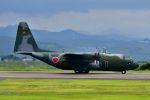 bestguyさんが、静岡空港で撮影した航空自衛隊 C-130H Herculesの航空フォト(写真)
