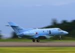 タミーさんが、静岡空港で撮影した航空自衛隊 U-125A(Hawker 800)の航空フォト(写真)