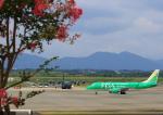 タミーさんが、静岡空港で撮影した航空自衛隊 C-130H Herculesの航空フォト(写真)