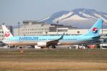 セブンさんが、新千歳空港で撮影した大韓航空 737-9B5/ER の航空フォト(飛行機 写真・画像)