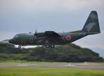 ピリンダさんが、静岡空港で撮影した航空自衛隊 C-130H Herculesの航空フォト(写真)