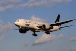 X8618さんが、伊丹空港で撮影した全日空 777-281の航空フォト(写真)