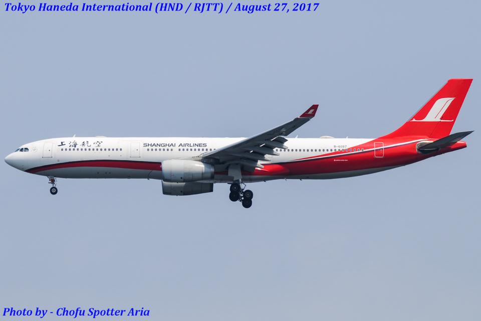 Chofu Spotter Ariaさんの上海航空 Airbus A330-300 (B-6097) 航空フォト
