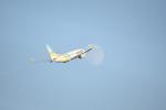 Oneworld 81Hさんが、羽田空港で撮影したAIR DO 737-781の航空フォト(写真)
