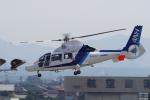 yabyanさんが、名古屋飛行場で撮影したオールニッポンヘリコプター AS365N3 Dauphin 2の航空フォト(写真)