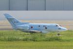 yabyanさんが、名古屋飛行場で撮影した航空自衛隊 U-125A (BAe-125-800SM)の航空フォト(写真)