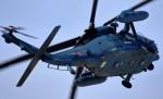 tomoD:5さんが、名古屋飛行場で撮影した航空自衛隊 UH-60Jの航空フォト(写真)