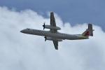 nobu2000さんが、ダニエル・K・イノウエ国際空港で撮影したアイランド・エア DHC-8-402Q Dash 8の航空フォト(写真)