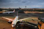 アップルゆこさんが、羽田空港で撮影した日本航空 787-8 Dreamlinerの航空フォト(写真)