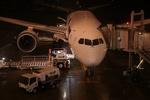 m-takagiさんが、広島空港で撮影した全日空 787-8 Dreamlinerの航空フォト(飛行機 写真・画像)