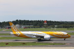 meijeanさんが、成田国際空港で撮影したスクート 787-8 Dreamlinerの航空フォト(写真)
