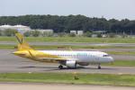 meijeanさんが、成田国際空港で撮影したバニラエア A320-214の航空フォト(写真)