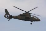 やつはしさんが、入間飛行場で撮影した陸上自衛隊 OH-1の航空フォト(写真)