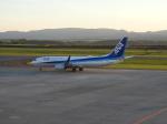 ベンさんが、旭川空港で撮影した全日空 737-881の航空フォト(写真)