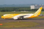 セブンさんが、新千歳空港で撮影したスクート 787-8 Dreamlinerの航空フォト(飛行機 写真・画像)